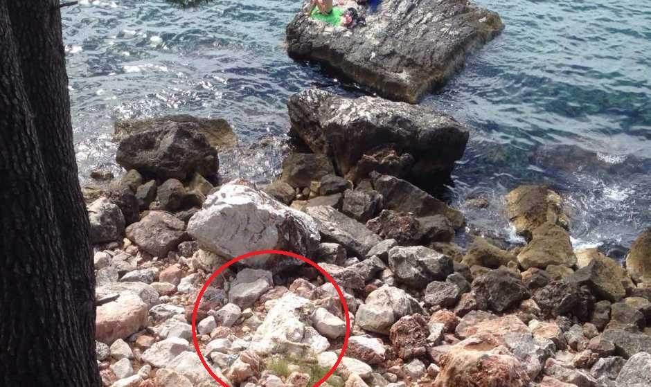 Crkotina na plaži