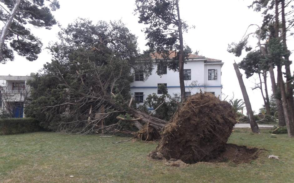 UPOZORENJE: Večeras mogući orkanski naleti vjetra!