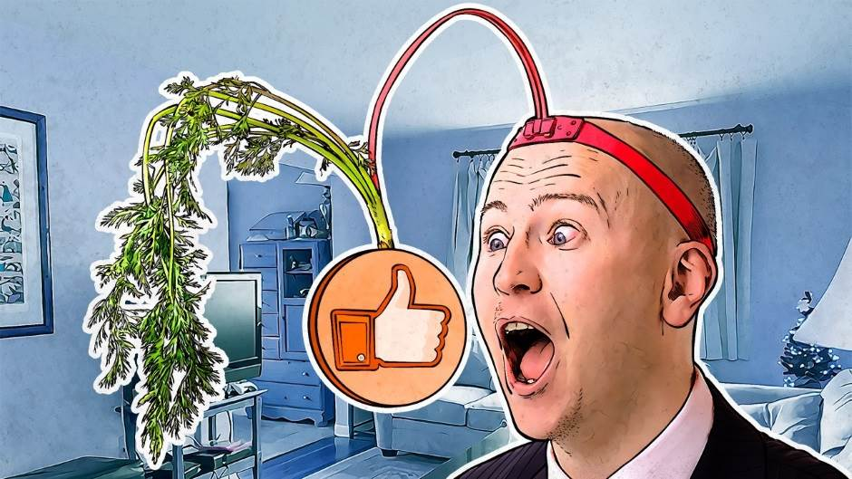 Facebook izlogovao ljude iz Crne Gore