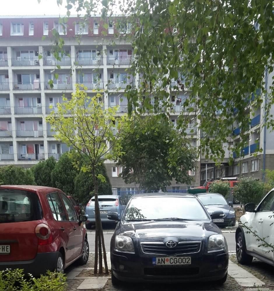 sllužbena CG kola u Beogradu