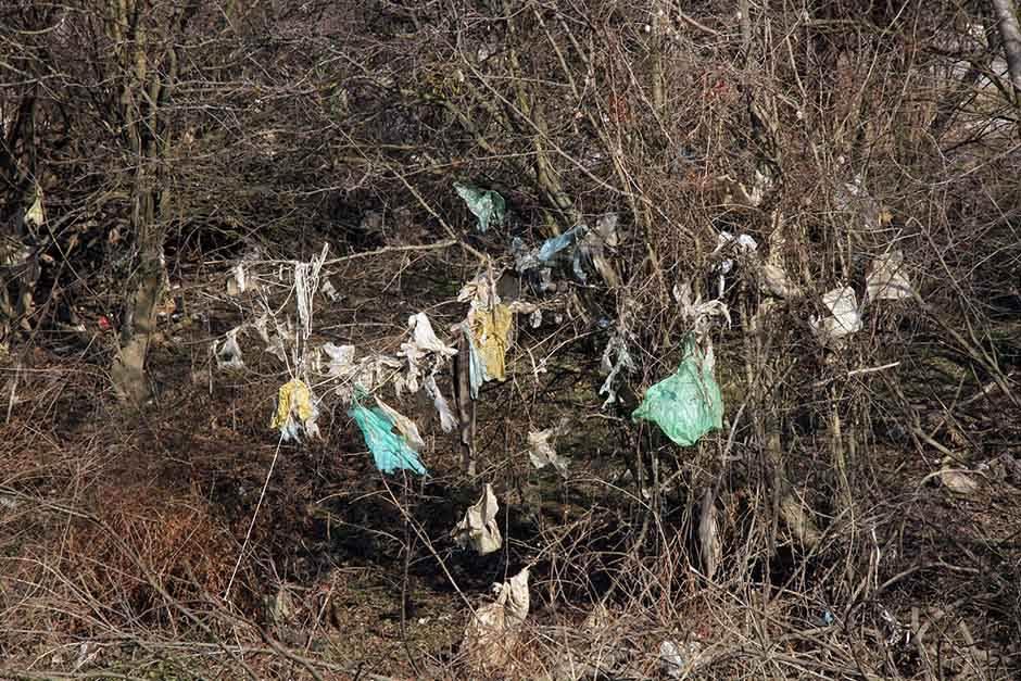 ANKETA: Da li se trudite da ne zagađujete okolinu?