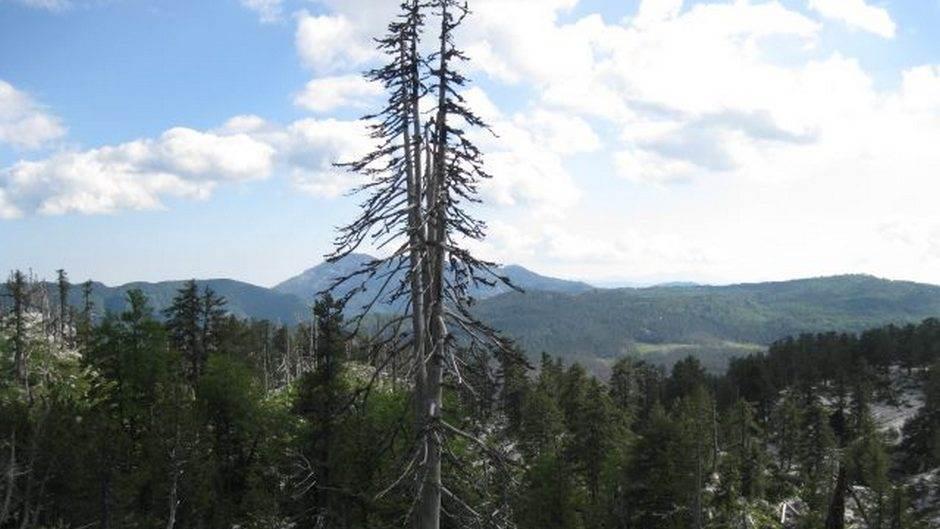 Maganik - najkamenitija Moračka planina (FOTO)