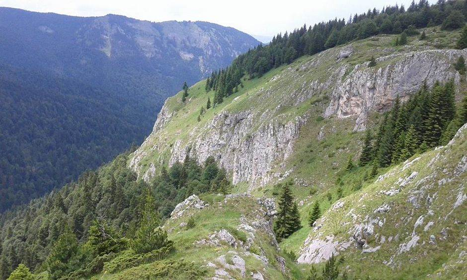Nestvarna ljepota planine Mokra