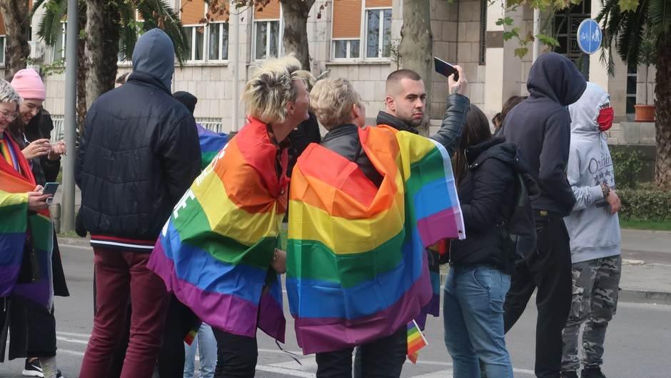 Parada ponosa