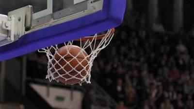 košarka kosarka koš kos obruč obruc mrezica mrežica lopta ilustracija pokrivalica