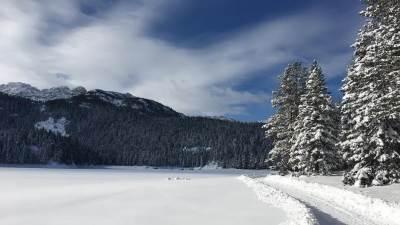 Žabljak , snijeg