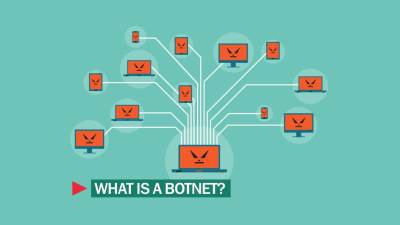 Botovi na internetu, Botnet mreže