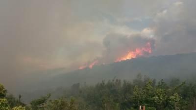 Sutomore požar