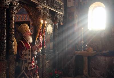 patrijarh irinej, irinej, slava, aleksandar karađorđević, prestalonaslednik, dvor,