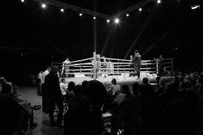 zlatna rukavica, boks, bokseri