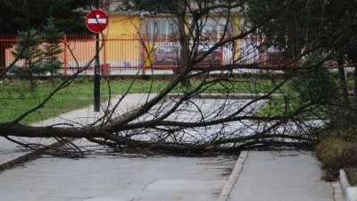 Banjaluka, vjetar
