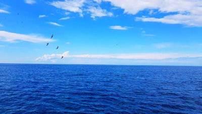 more, priroda, plaža, Petrovac