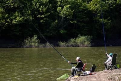 pecaroš, jezero, pecanje, priroda, prirodne lepote