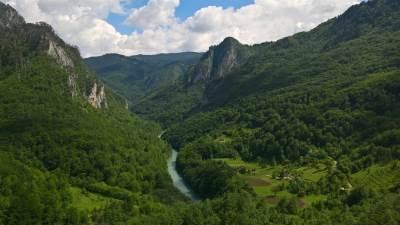 reka, kanjon, tara, šuma, planina