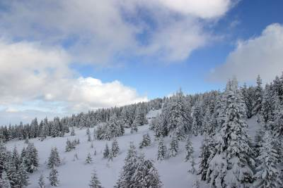 sneg zima planina vreme prognoza pahulja zimovanje selo zavejano