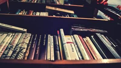 knjige, pisci