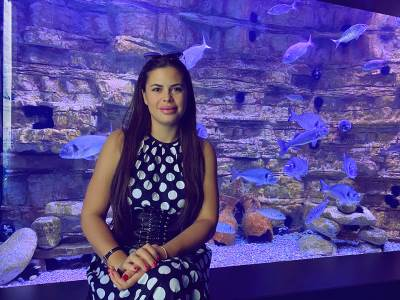 akvarijum teodora kotor